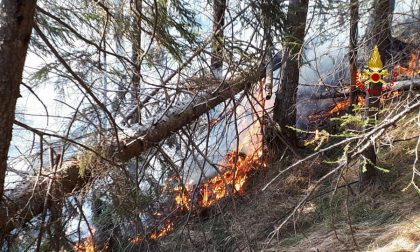 San Pietro di Cadore, fiamme nel bosco schiantato da Vaia