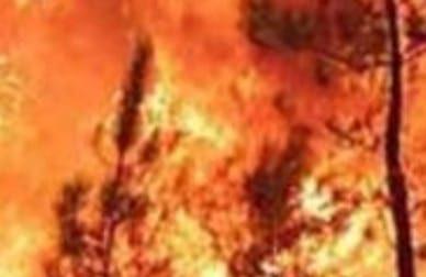 Pedavena, i vigili del fuoco domano un incendio che stava per minacciare le abitazioni
