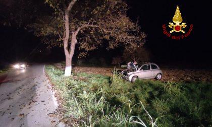 Perde il controllo dell'auto e si schianta contro un albero a Feltre: donna ferita