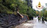 Maltempo Belluno e provincia, alberi sradicati: 25 interventi dei Vigili del fuoco – FOTO