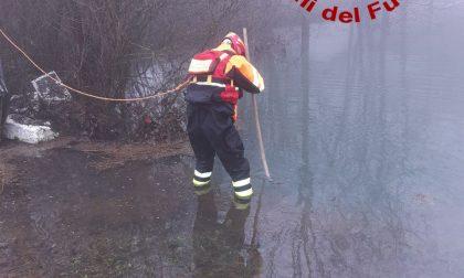 Maltempo Belluno: superati i 500 interventi di soccorso - FOTO