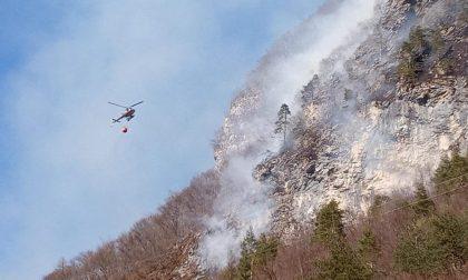 Incendio boschivo a Mezzocanale, sul posto gli elicotteri e il personale della Regione