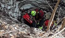 Setter cade in una forra di 50 metri: salvata dai pompieri dopo 5 giorni