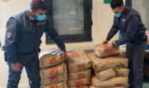 Sequestrate quasi mille bottiglie di vino bianco dichiarato come prosecco DOC ma privo di etichetta