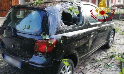 Le foto del maltempo nel Bellunese: oltre 50 interventi dei Vigili del fuoco