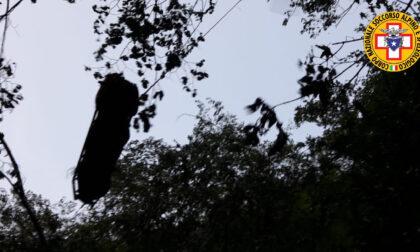 Boscaiolo 32enne perde la vita travolto da un albero durante i lavori boschivi