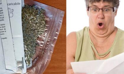 Invia marijuana per posta a  un amico, ma sbaglia indirizzo: la droga arriva... a  una nonna