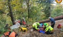 Si rovescia con il trattore mentre fa legna nel bosco: 80enne ferito